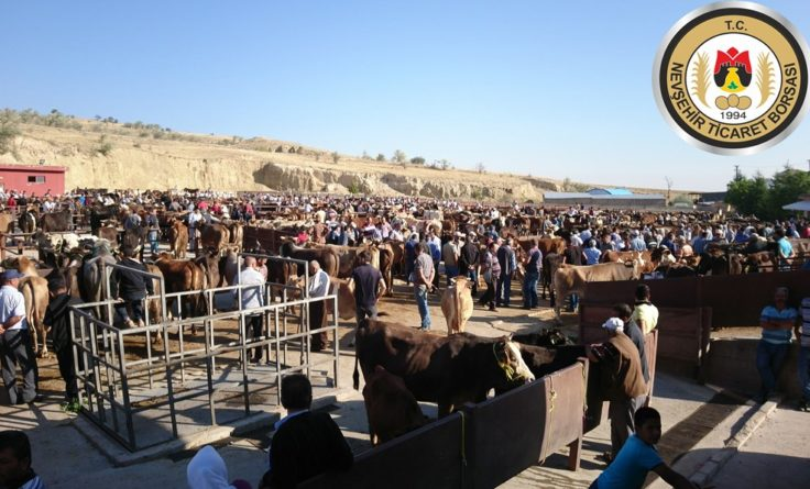 Nevşehir Hayvan Pazarı Kapatıldı
